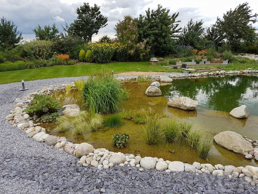 Natural swimming ponds ygp pond services for Koi pond builders yorkshire