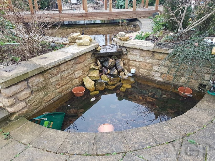Ygp pond services for Koi pond builders east rand