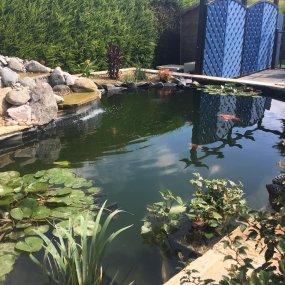 Portfolio | YGP Pond Services