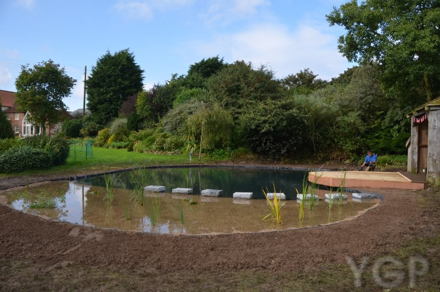 Ygp pond services for Koi pond builders yorkshire